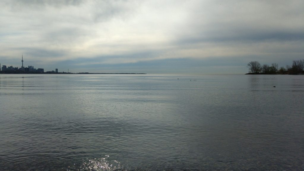 The skyline as seen from Humber Bay Shores Park looking south.